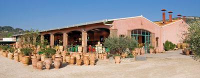 Visit poterie le ch ne vert vases d 39 anduze anduze planters - Poterie anduze boisset prix ...